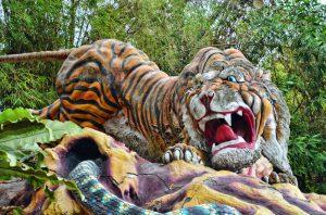 baume tigre choisir