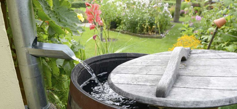 recuperation-eau-pluie