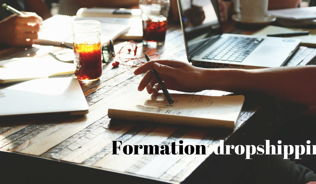 Formation dropshipping : nouvel eldorado de l'e-commerce