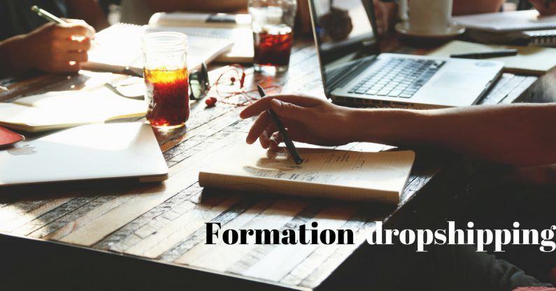 meilleure formation dropshipping