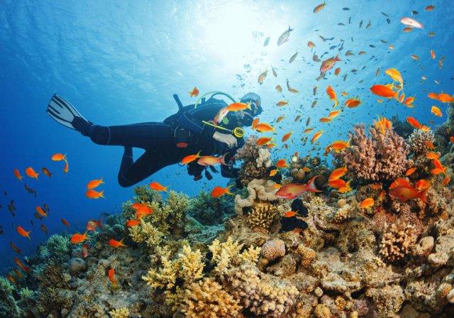 Activités en mer et voyage bahamas