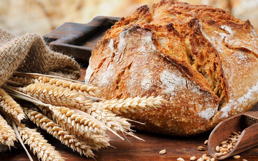 Machine à pain : à quoi ça sert ? quel prix ?